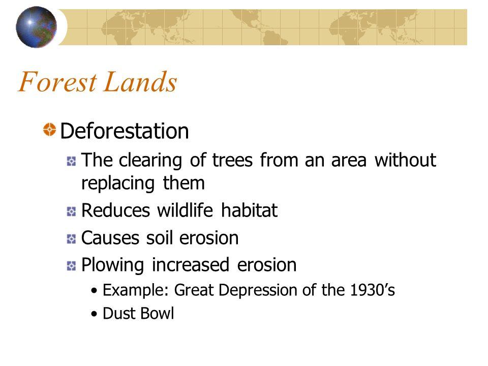 Forest Lands Deforestation
