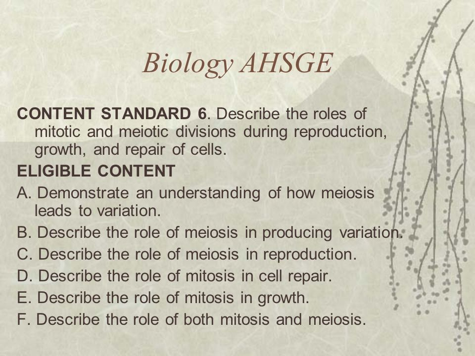 Biology AHSGE CONTENT STANDARD 6. Describe the roles of mitotic and meiotic divisions during reproduction, growth, and repair of cells.