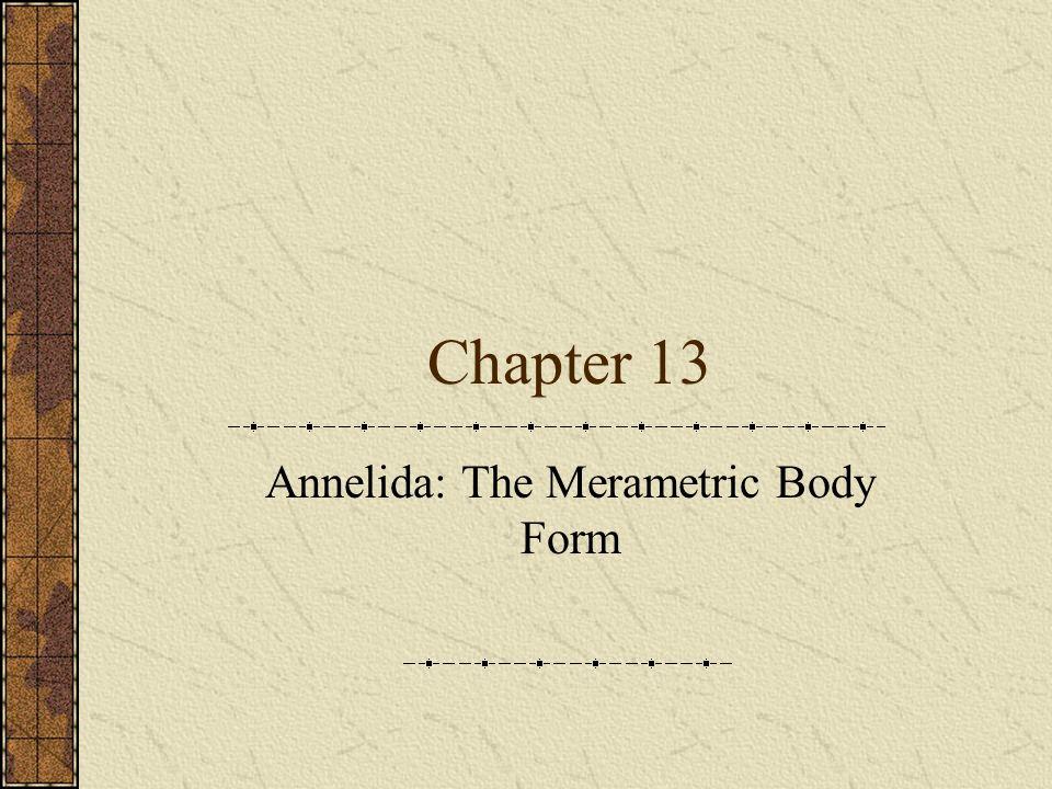 Annelida: The Merametric Body Form