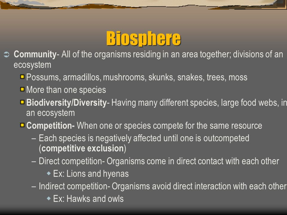 Biosphere Community- All of the organisms residing in an area together; divisions of an ecosystem.