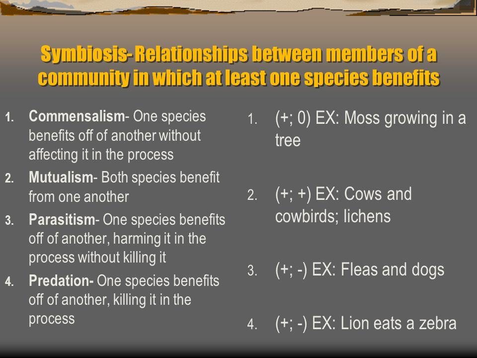 Symbiosis- Relationships between members of a community in which at least one species benefits