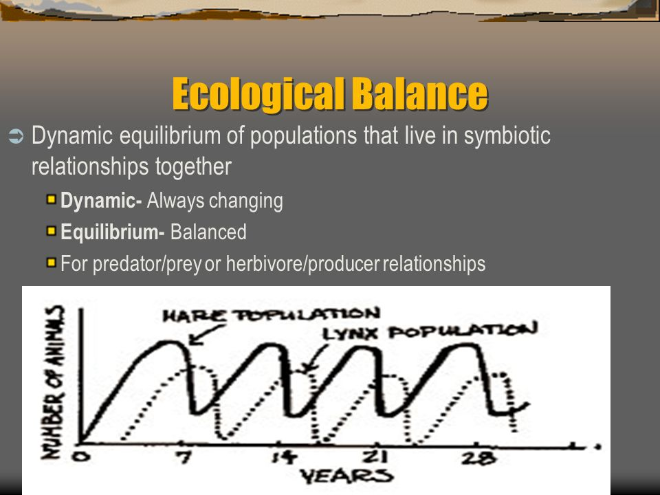 Ecological Balance Dynamic equilibrium of populations that live in symbiotic relationships together.