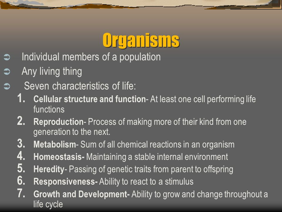 Organisms Individual members of a population Any living thing