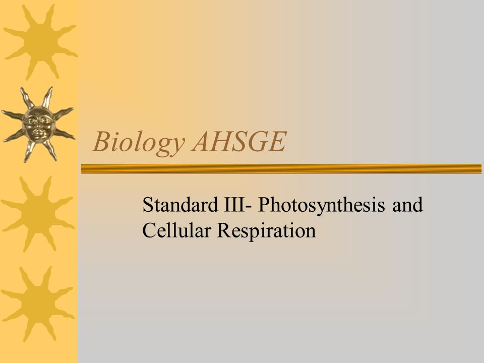 Standard III- Photosynthesis and Cellular Respiration