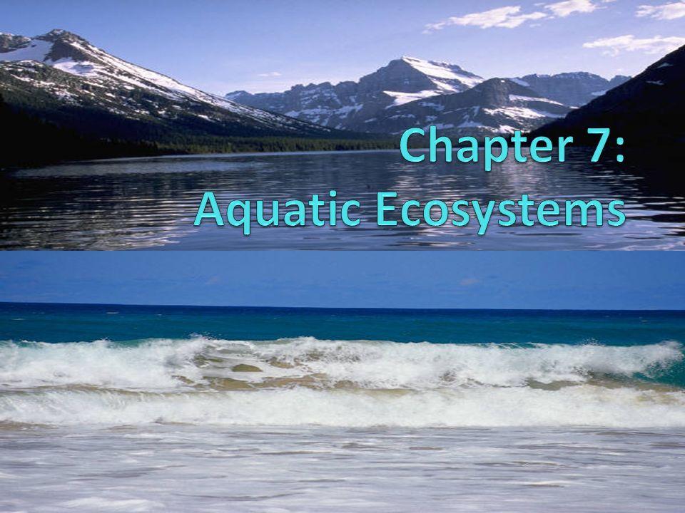 Chapter 7: Aquatic Ecosystems