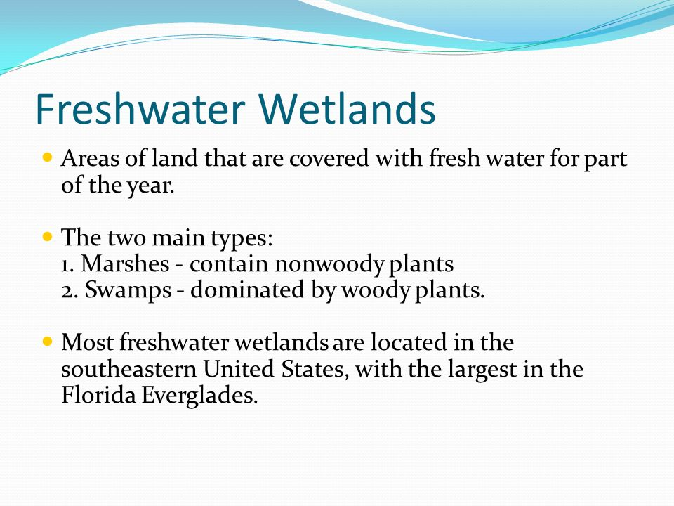 Freshwater Wetlands Areas of land that are covered with fresh water for part of the year. The two main types: