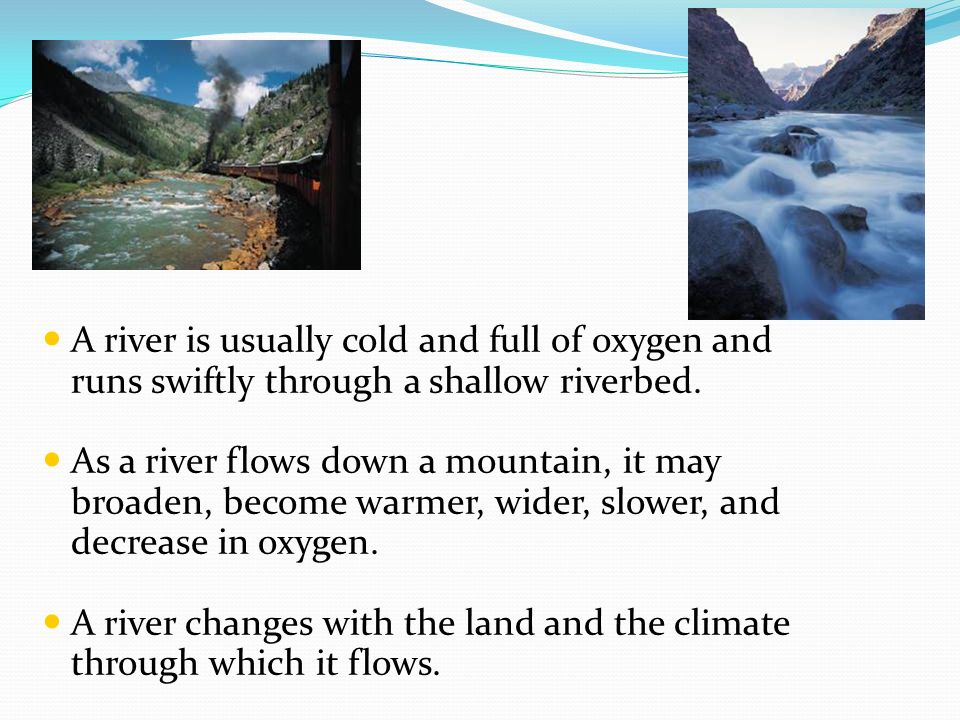 Rivers A river is usually cold and full of oxygen and runs swiftly through a shallow riverbed.