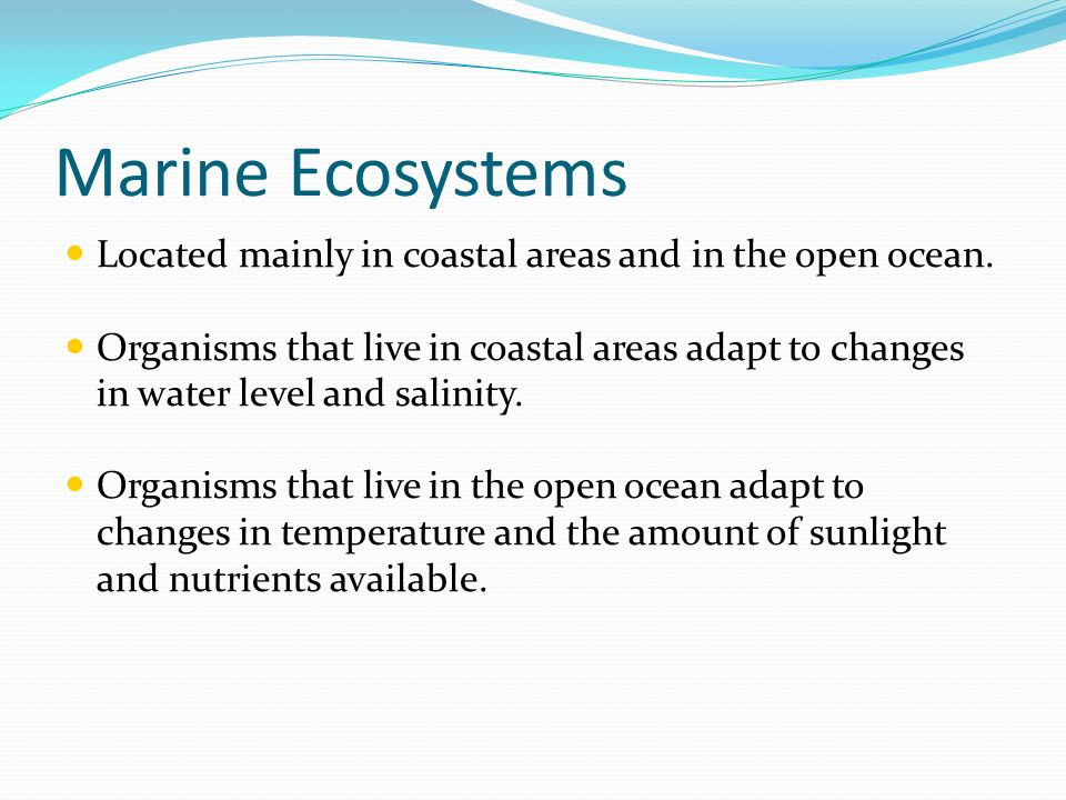 Marine Ecosystems Located mainly in coastal areas and in the open ocean.