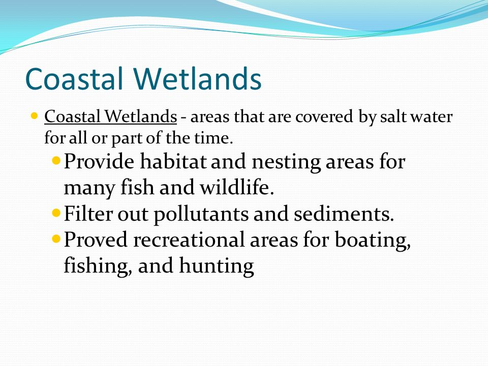 Coastal Wetlands Coastal Wetlands - areas that are covered by salt water for all or part of the time.