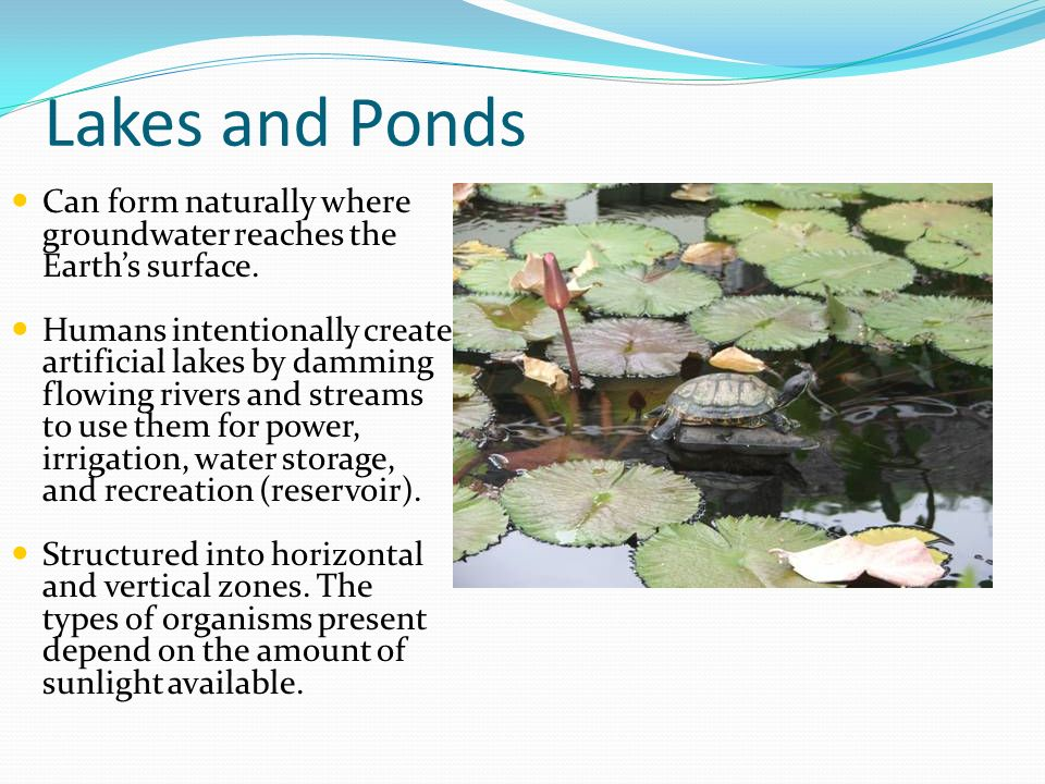 Lakes and Ponds Can form naturally where groundwater reaches the Earth's surface.