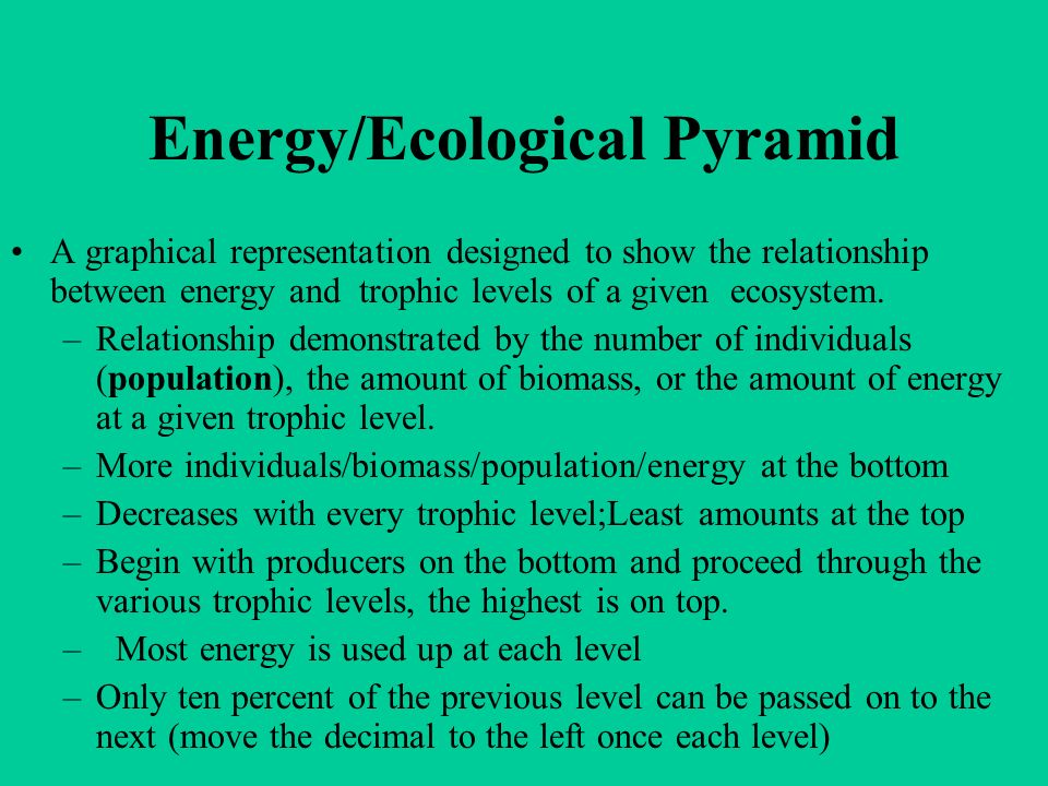 Energy/Ecological Pyramid