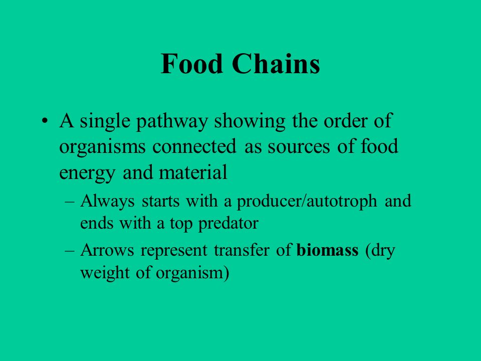 Food Chains A single pathway showing the order of organisms connected as sources of food energy and material.