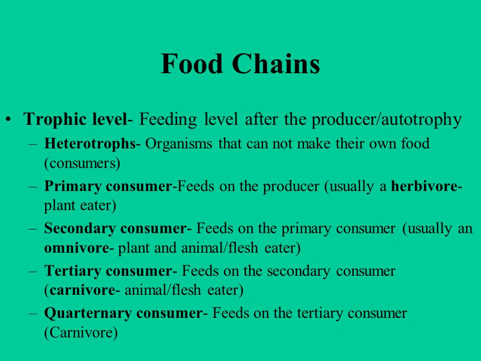 Food Chains Trophic level- Feeding level after the producer/autotrophy