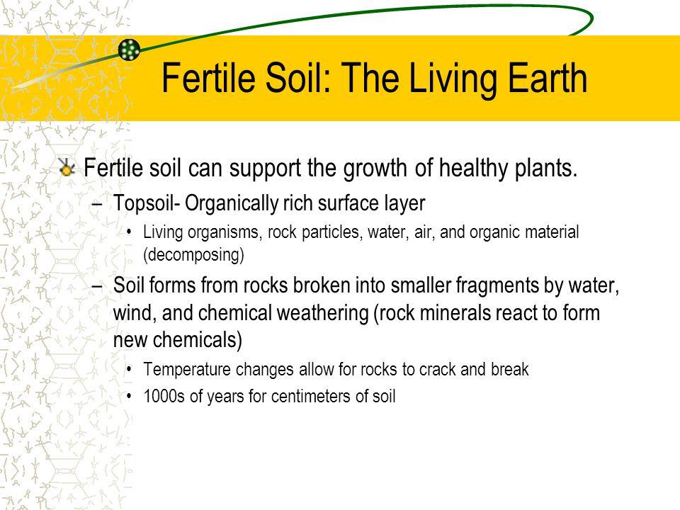 Fertile Soil: The Living Earth