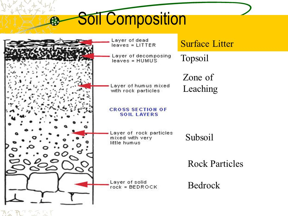 Chapter 15 food and agriculture ppt download for Soil composition definition