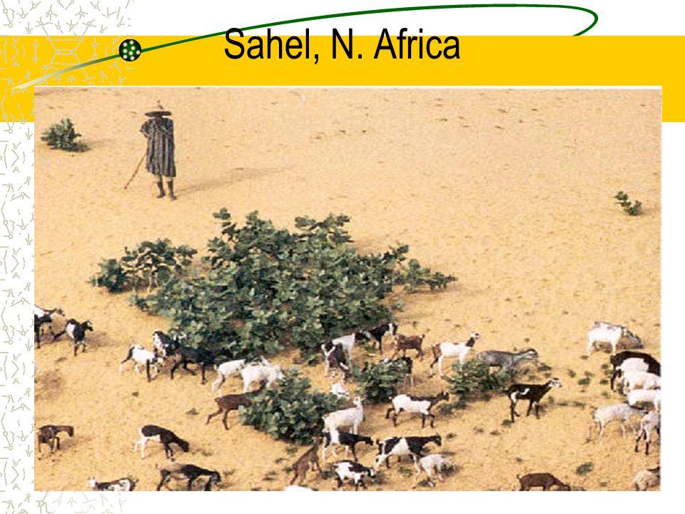 Sahel, N. Africa