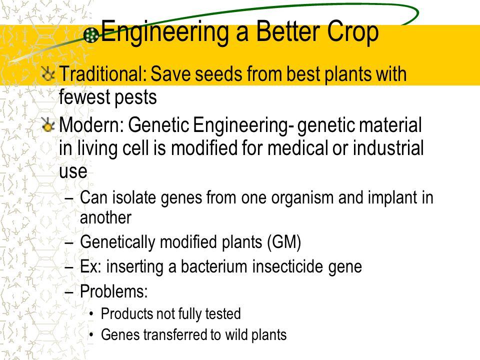 Engineering a Better Crop