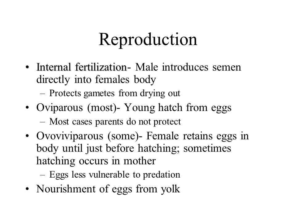 Reproduction Internal fertilization- Male introduces semen directly into females body. Protects gametes from drying out.