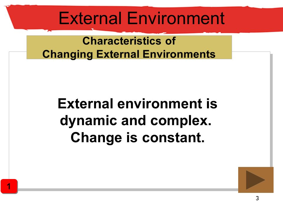 External Environment External environment is dynamic and complex.