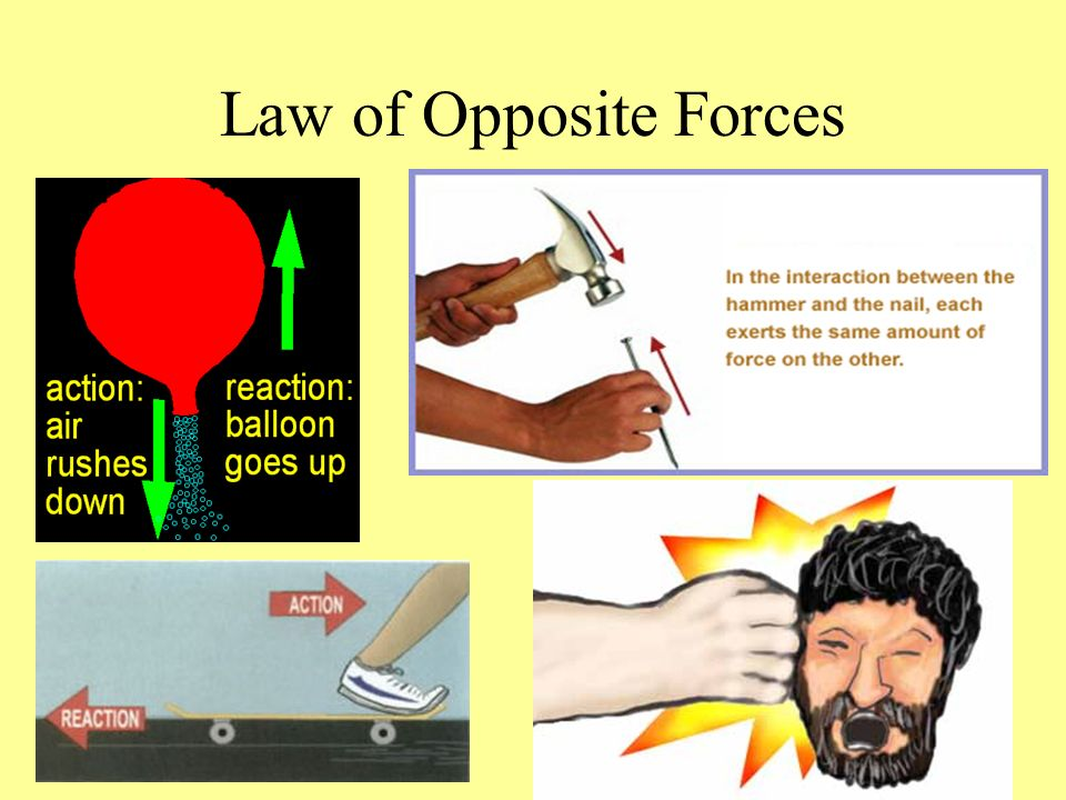 Law of Opposite Forces