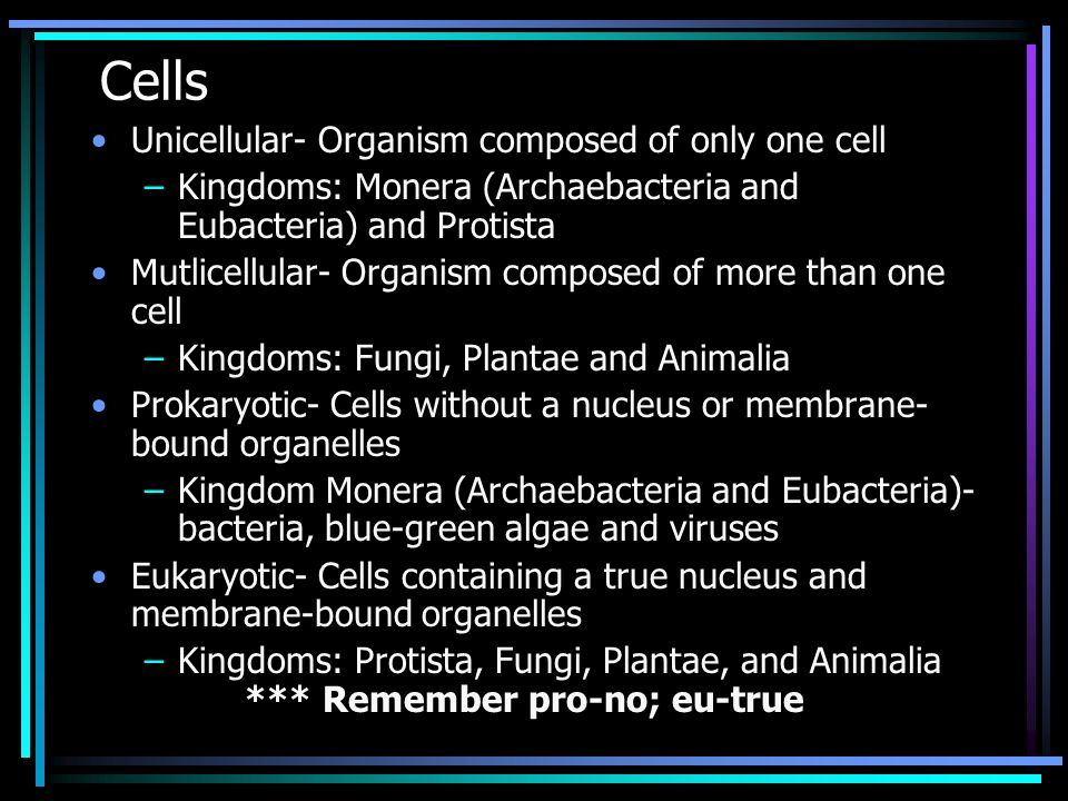 Cells Unicellular- Organism composed of only one cell