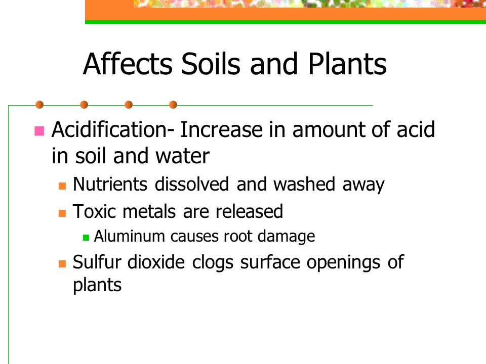 Affects Soils and Plants