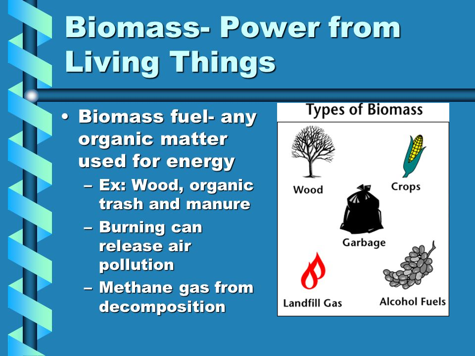 Biomass- Power from Living Things