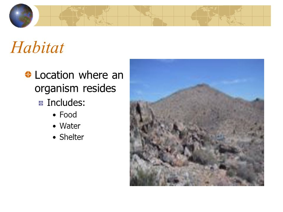 Habitat Location where an organism resides Includes: Food Water
