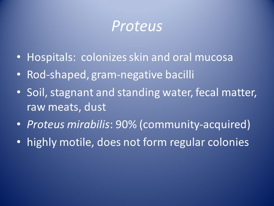 Proteus Hospitals: colonizes skin and oral mucosa