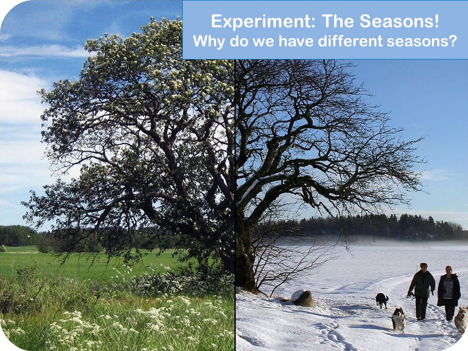 Experiment: The Seasons! Why do we have different seasons