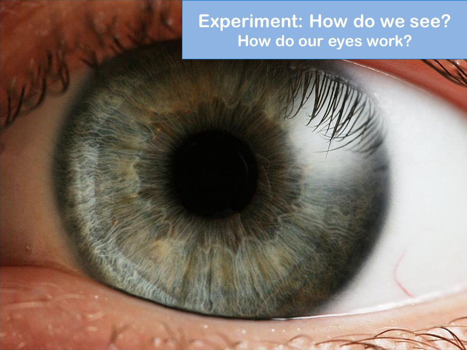 Experiment: How do we see How do our eyes work