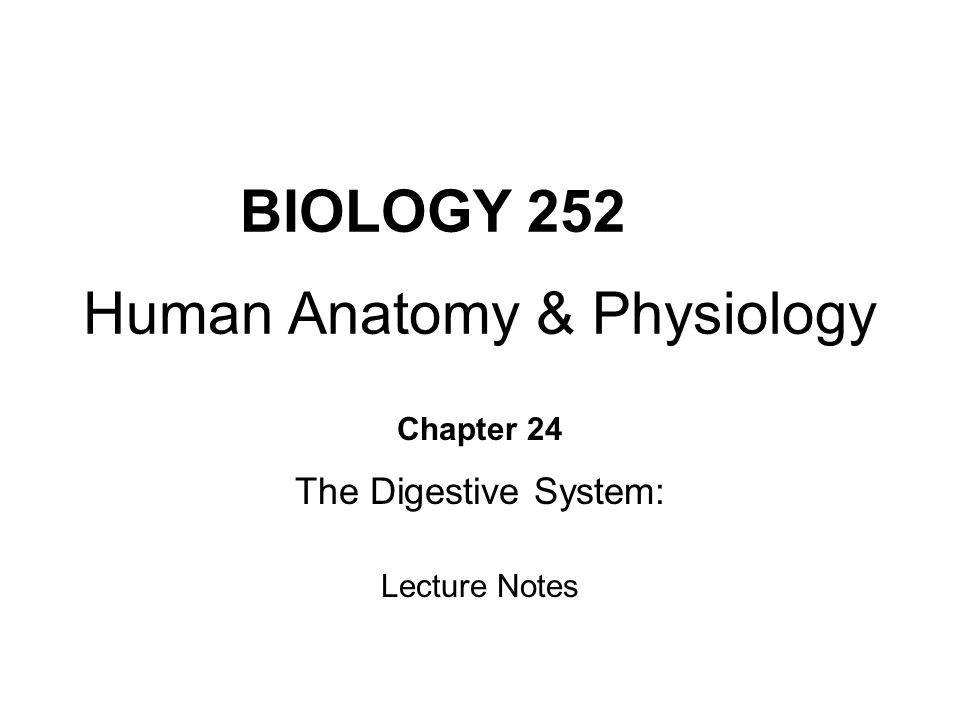 Biology 252 Human Anatomy Physiology Ppt Video Online Download - Www