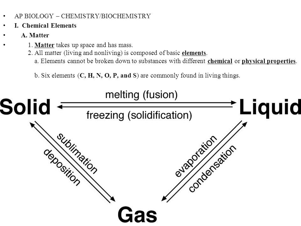 ap biology biochemistry Biochemistry question 1991: l peterson/ap biology carbon is a very important element in living systems a describe the various characteristics of the carbon atom.