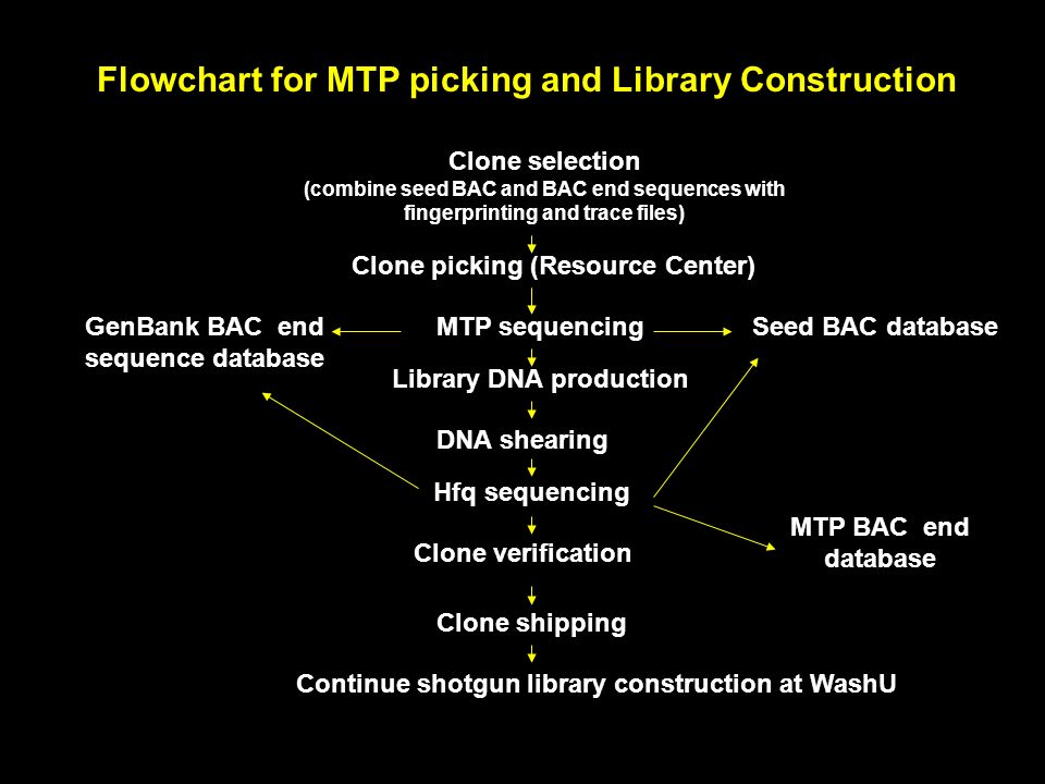 Flowchart for MTP picking and Library Construction