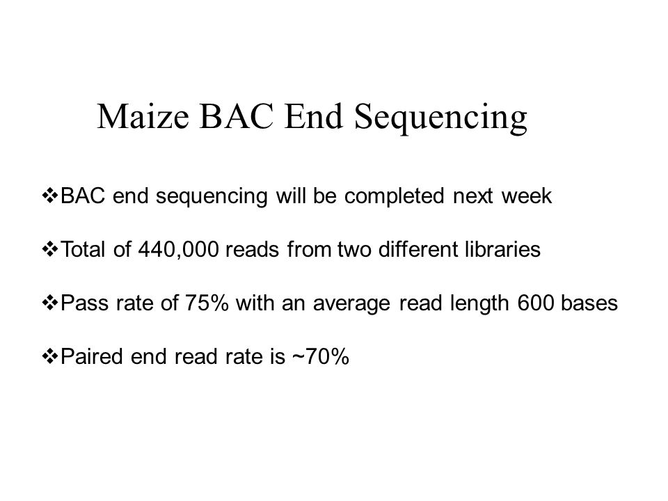 Maize BAC End Sequencing