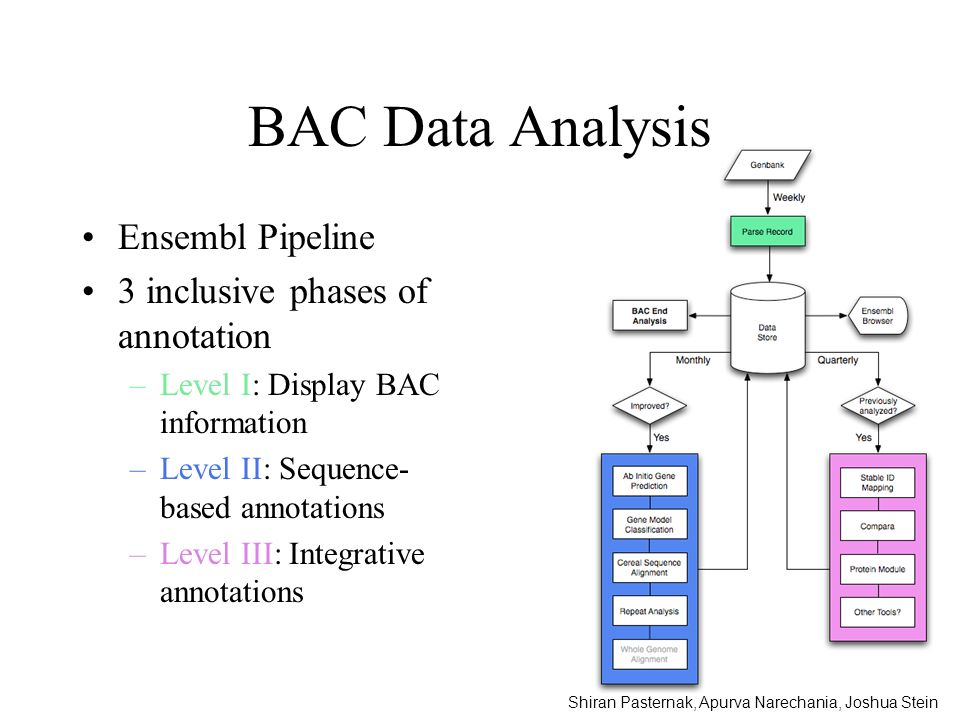 BAC Data Analysis Ensembl Pipeline 3 inclusive phases of annotation