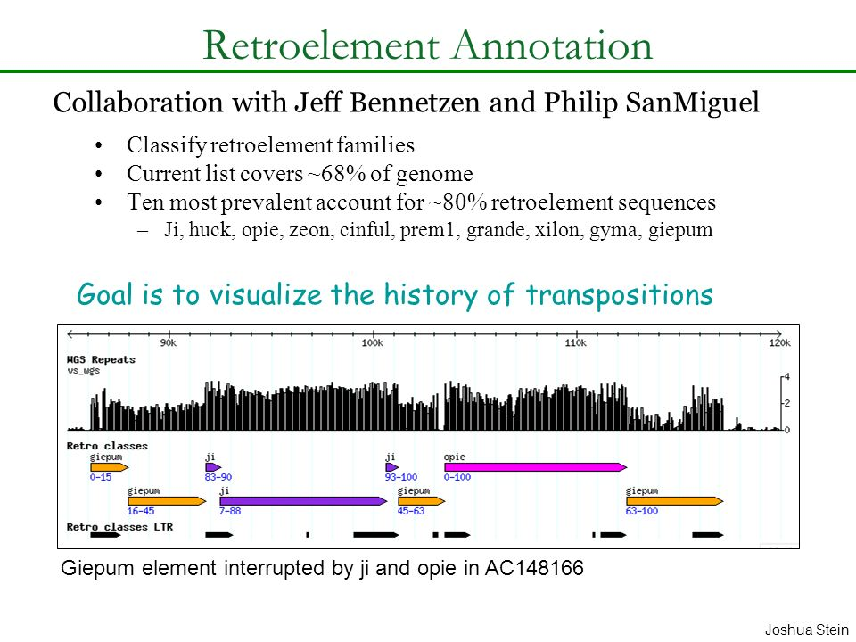 Retroelement Annotation