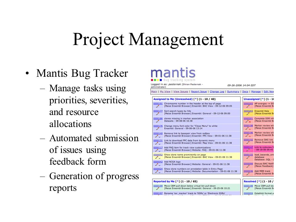 Project Management Mantis Bug Tracker
