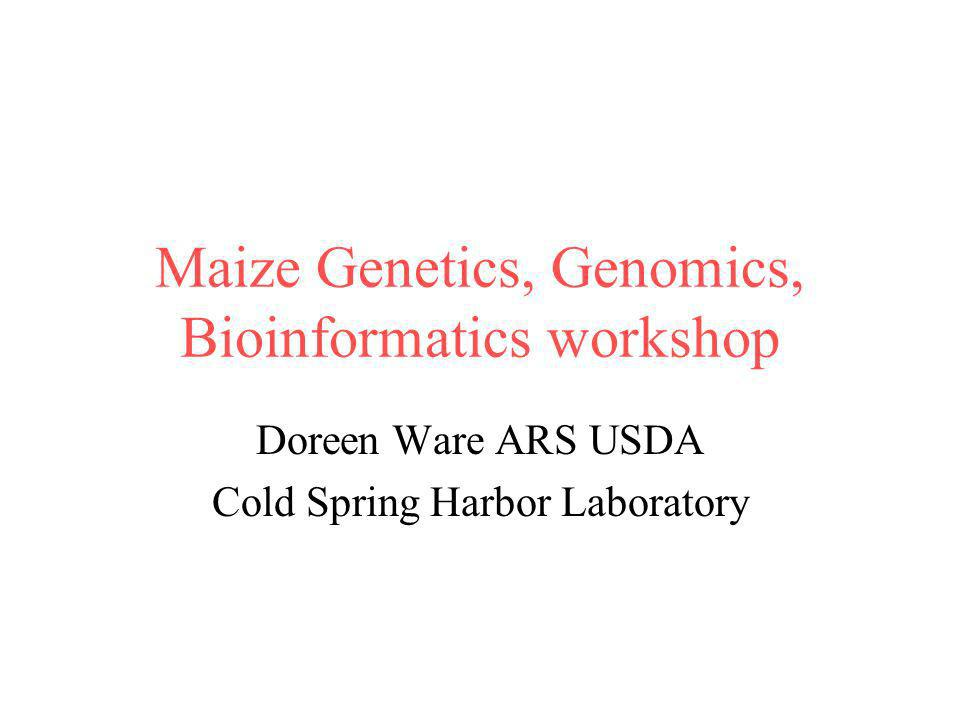 Maize Genetics, Genomics, Bioinformatics workshop