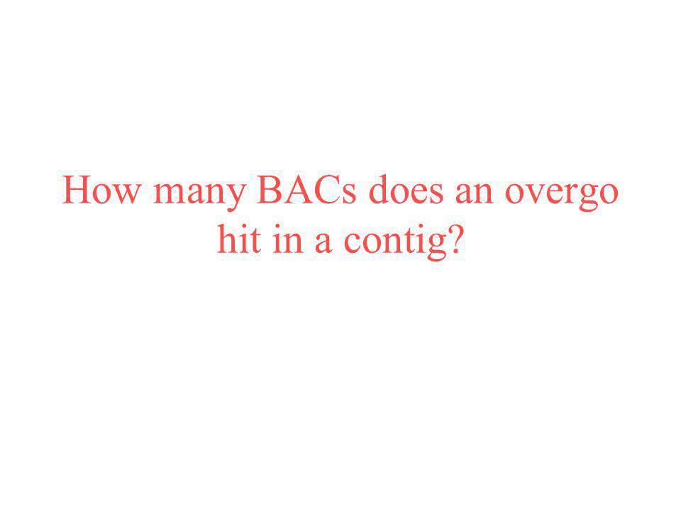 How many BACs does an overgo hit in a contig