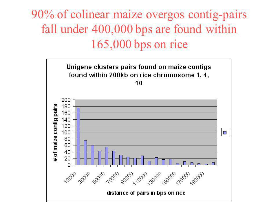 90% of colinear maize overgos contig-pairs fall under 400,000 bps are found within 165,000 bps on rice