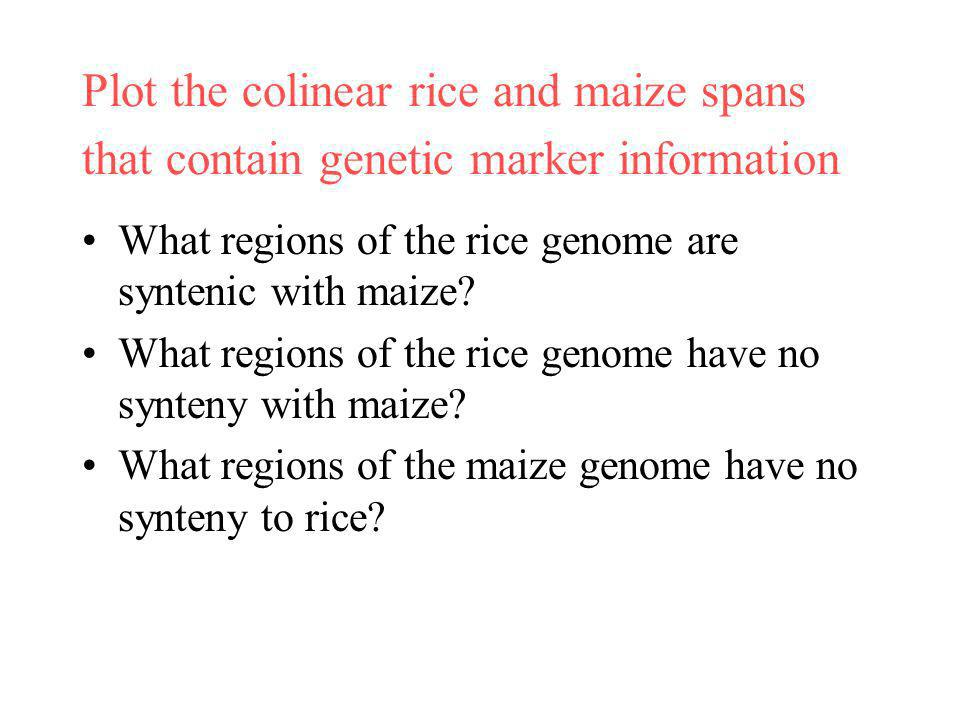 Plot the colinear rice and maize spans that contain genetic marker information