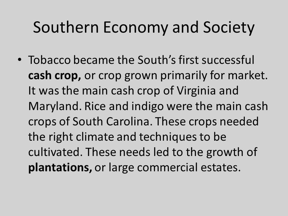Southern Economy and Society