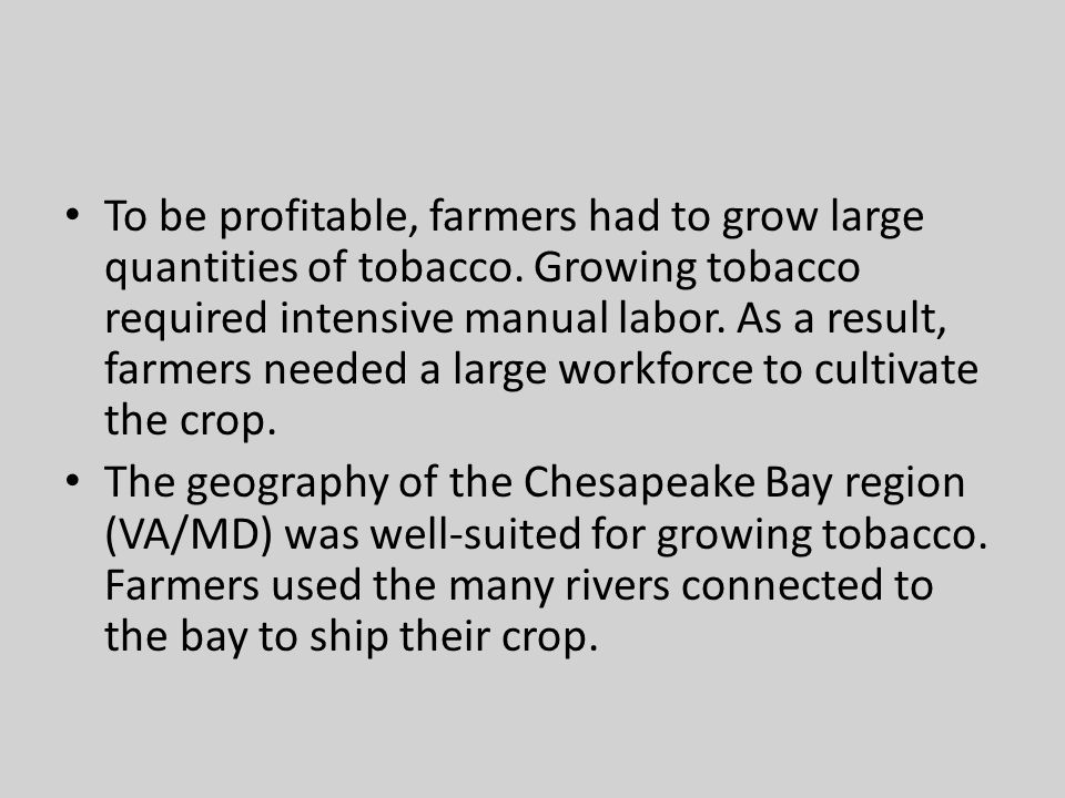To be profitable, farmers had to grow large quantities of tobacco