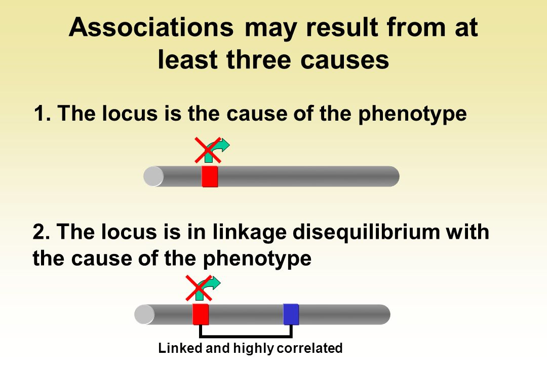 Associations may result from at least three causes