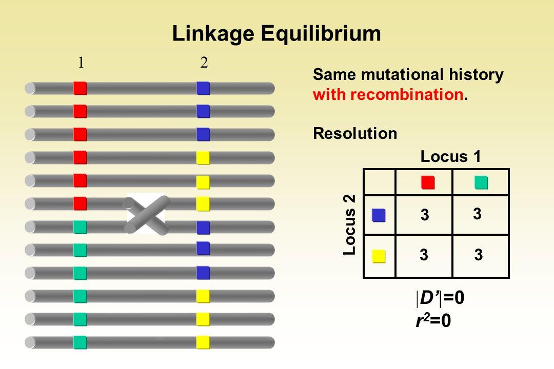 Linkage Equilibrium D'=0 r2=0 1 2 3 Locus 1 Locus 2