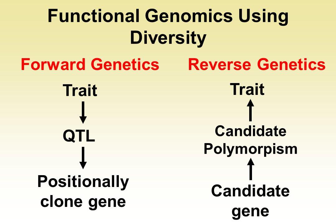 Functional Genomics Using Diversity