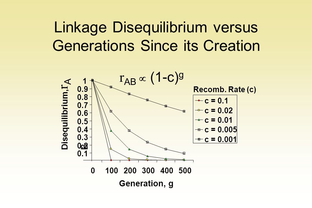 Linkage Disequilibrium versus Generations Since its Creation