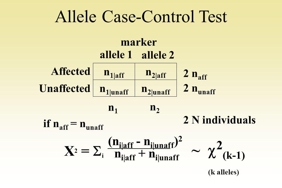 Allele Case-Control Test