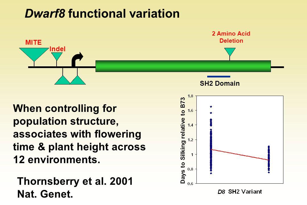 Dwarf8 functional variation